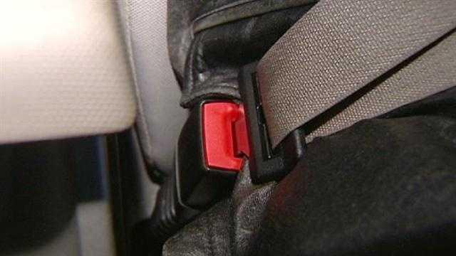 Generic seat belt