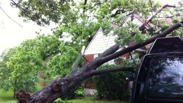 Image Tree on House