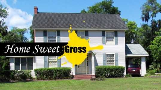 Gross stuff in your home