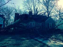 A large tree fell on a home on Ward Parkway Plaza between 79th Street and 80th Street on Sunday night. Sunday night's strong winds might have caused the tree to topple.