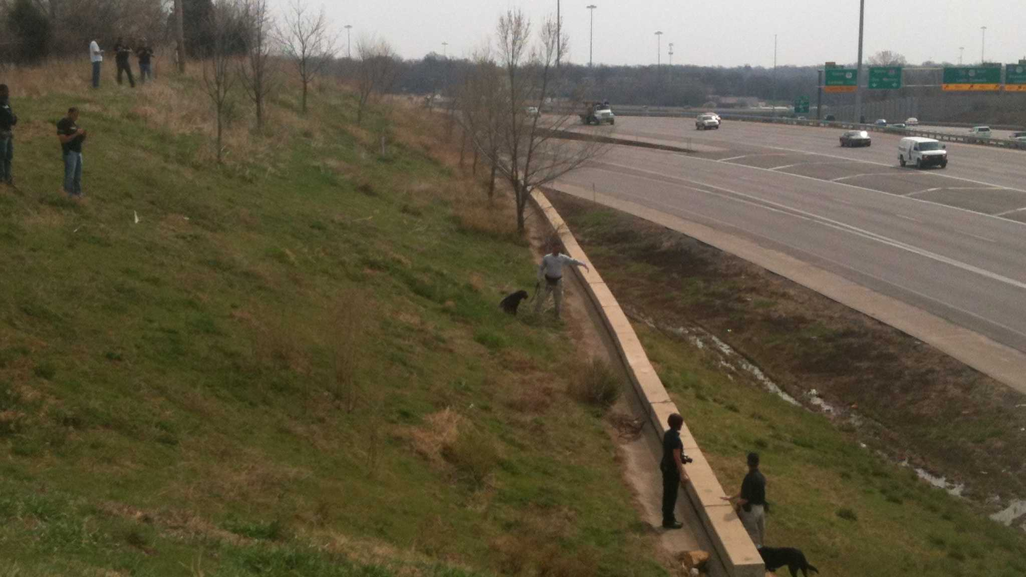 Police and dogs searching near Grandview Triagle for highway shooter