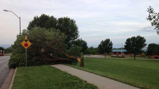 Tree down near Liberty Community Center