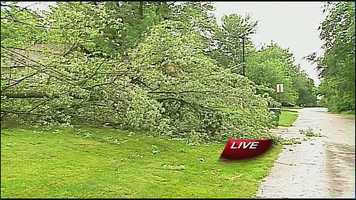 Tree down on power line near Raytown South High School