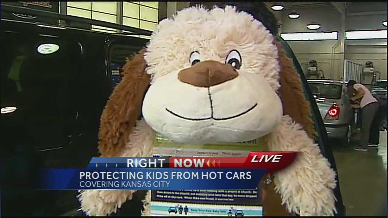 Stuffed toy technique can help prevent hot car deaths