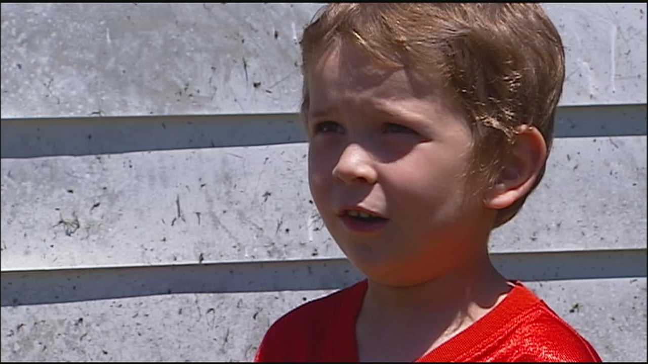 A 5-year-old St. Joseph, Missouri, boy said he was playing in his backyard when someone with a gun came up and stole his new dog.