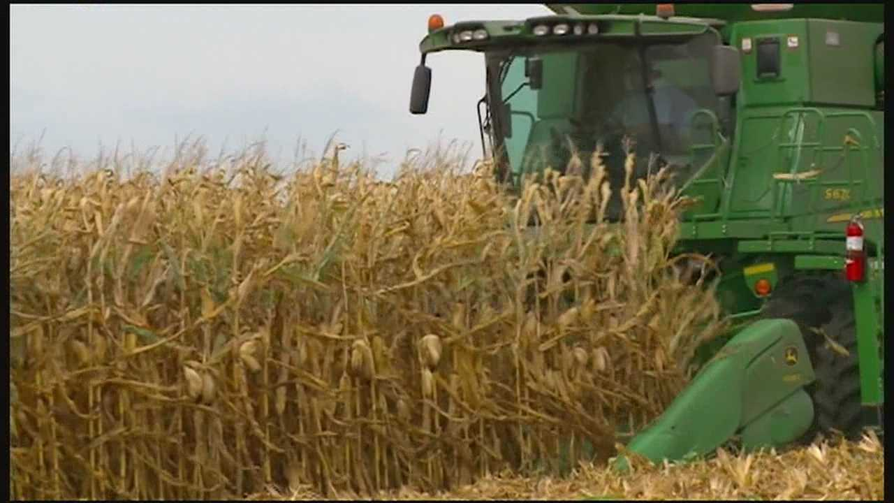 Poll: Right to farm amendment issue too close to call