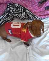 Barkley is a #1 Chiefs fan.