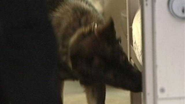 Drug dog leads jail shakedown
