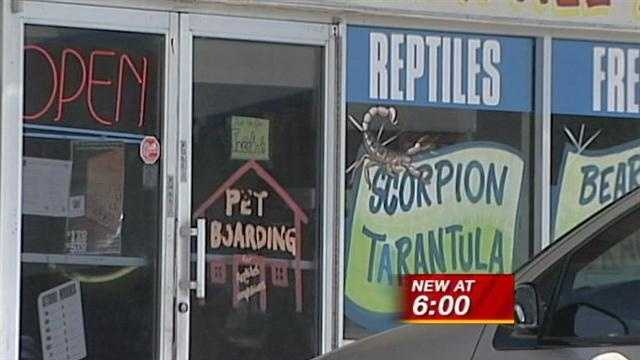 Employees at a pet shop end up behind bars