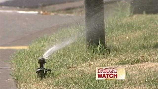 Water Authority asking people to cut back thier watering to one day a week