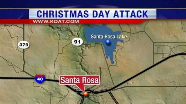 A bizarre Christmas Day attack in Santa Rosa has one man fighting for his life and another man and his son behind bars.