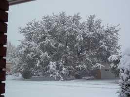 4. Winter of 1942-1943: 1 inch