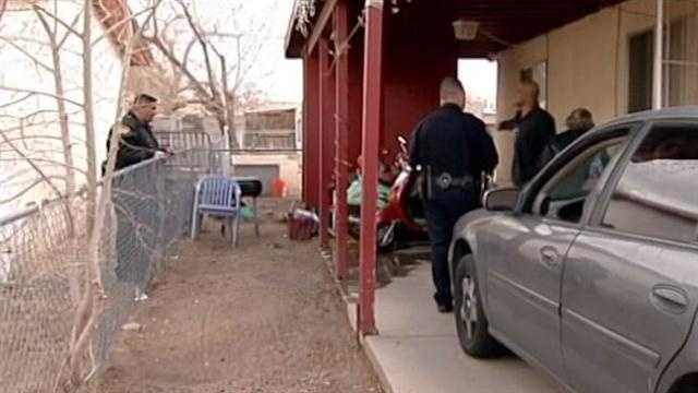 Police shoot pit bull after mauling