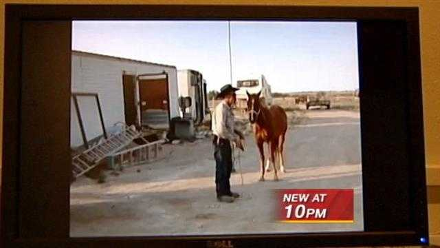 A very graphic video shows a New Mexico man shooting a horse at point blank range.