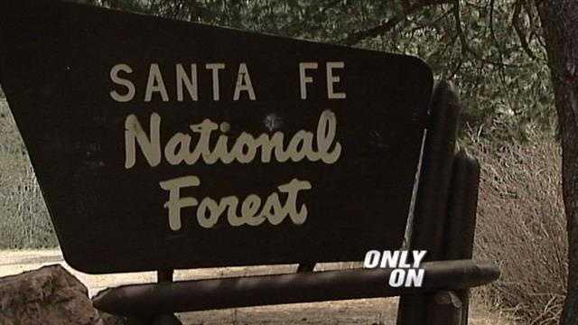 Santa Fe forest generic