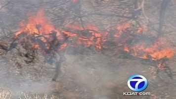 Fire crews are battling a wildfire near the Rio Grande and Rio Bravo. See photos.