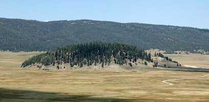 Bigfoot in the Valles Caldera National Preserve