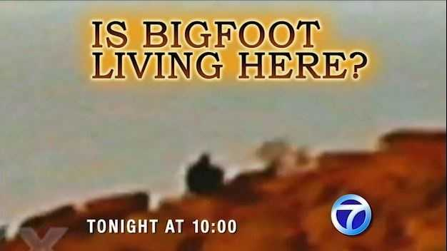 Is Bigfoot living in New Mexico? It sounds outrageous, but Tonight at 10 p.m. Action 7 News reveals new evidence, and after you see what they found, you may become a believer.