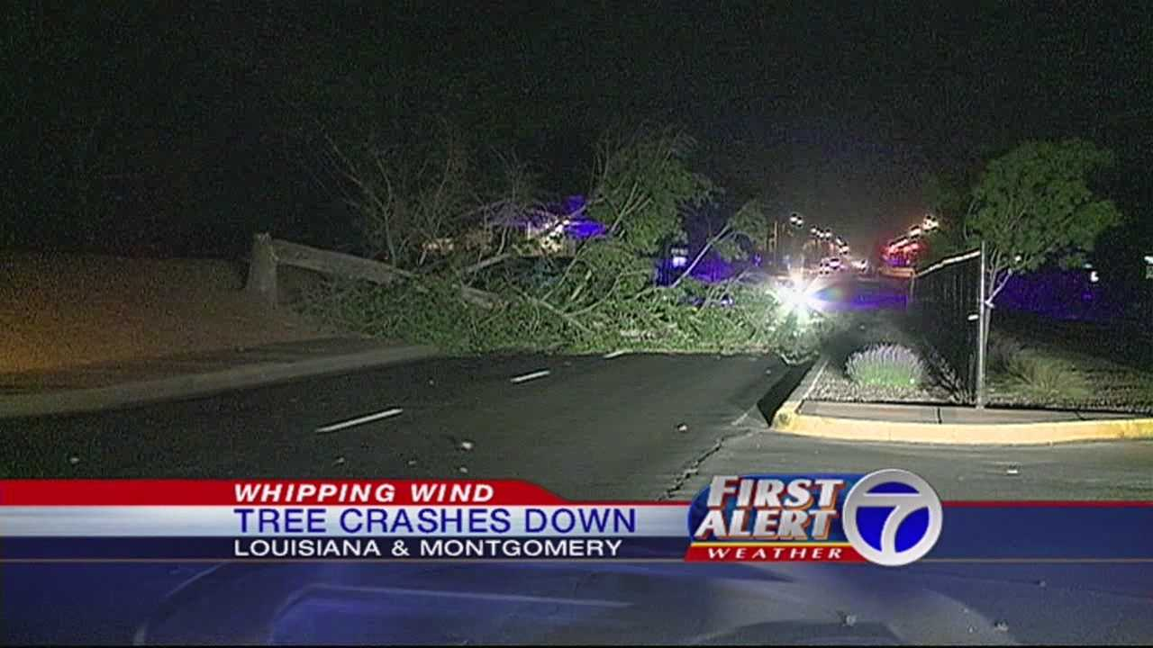 Strong winds knocked down power lines, trees and even light poles near Louisiana and Montgomery.