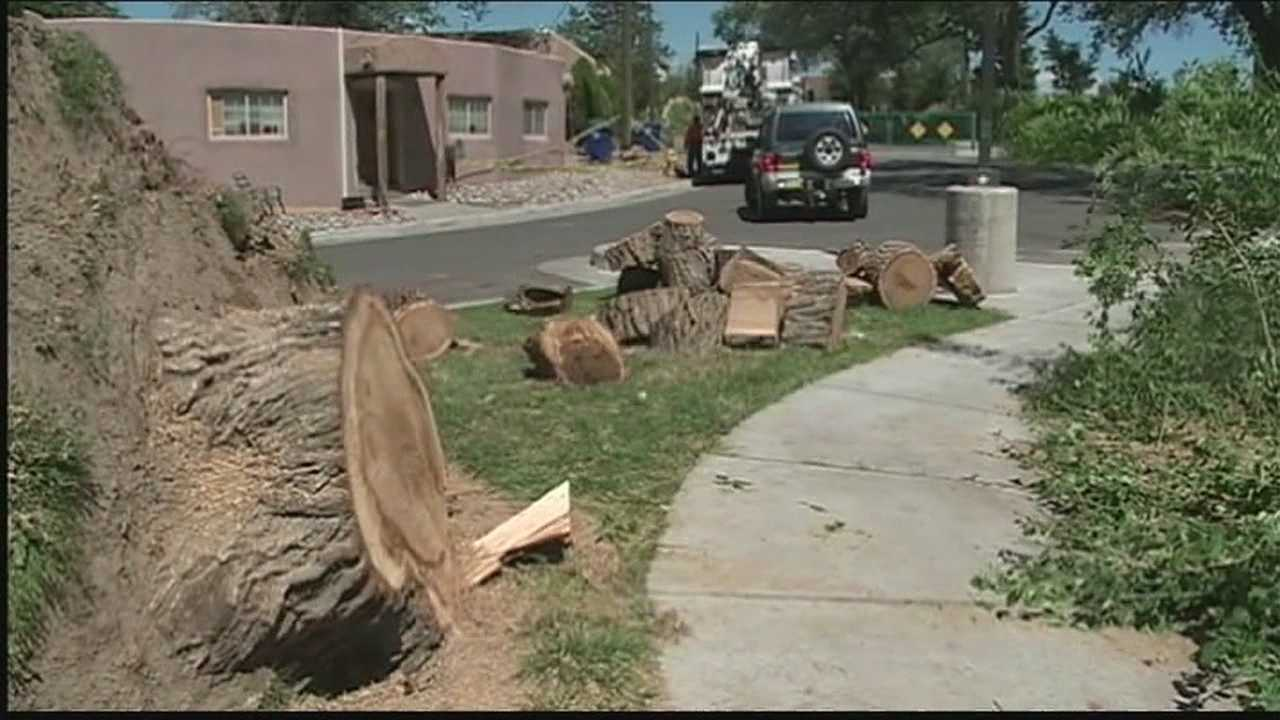 Storm damage leads to uptick in fake cleanup companies