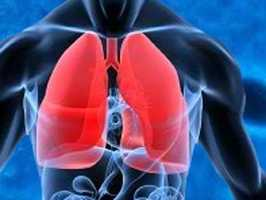 4. Chronic Lower Respiratory Diseases (1,022 deaths)