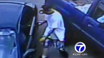 VIDEO:Would be burglar targets mixed martial arts gym|Fighters taking unique approach to catch a man who almost broke into cars in front of their gym.