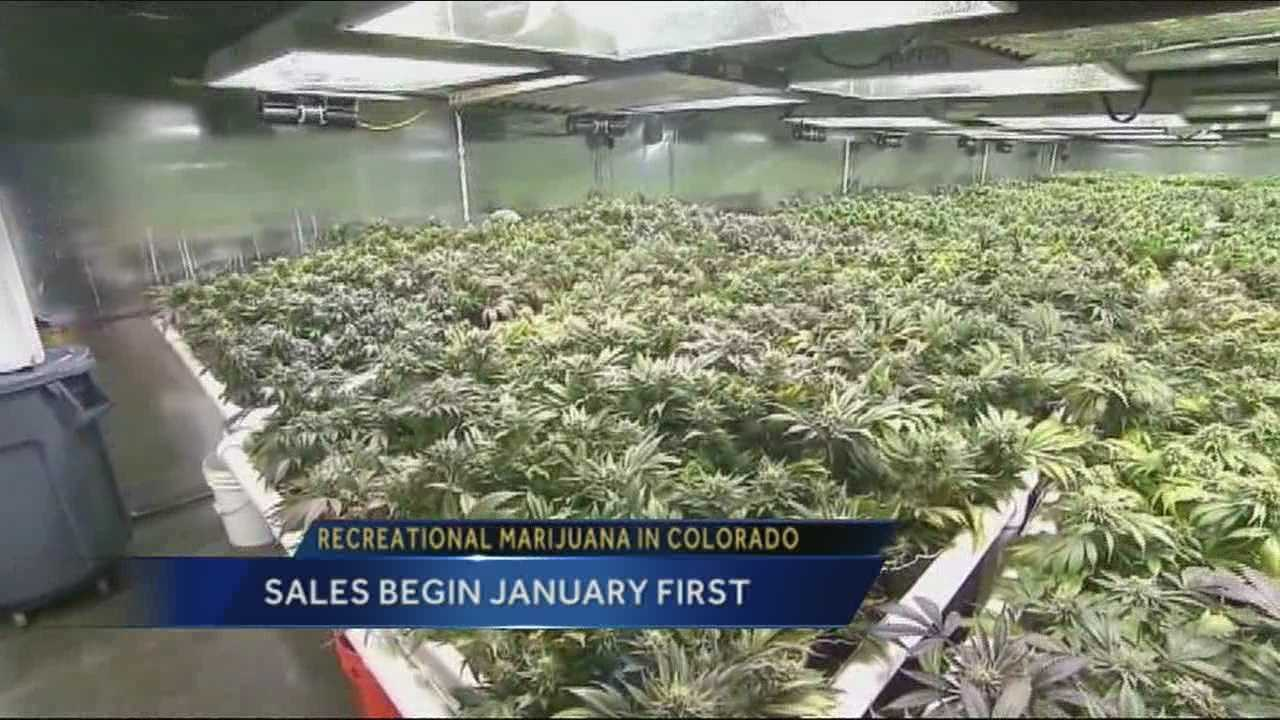 In fewer than 15 hours, Colorado will become the first state in the nation allowing the legal sale of recreational marijuana.