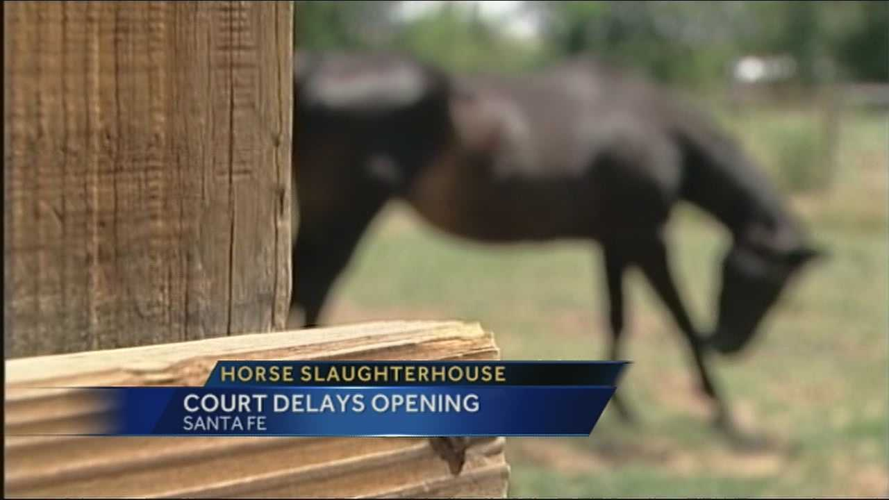 A New Mexico court extended the temporary restraining order on a state horse-slaughter plant for 10 more days.