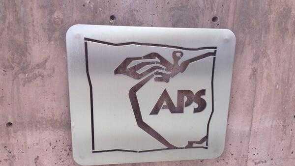 aps generic