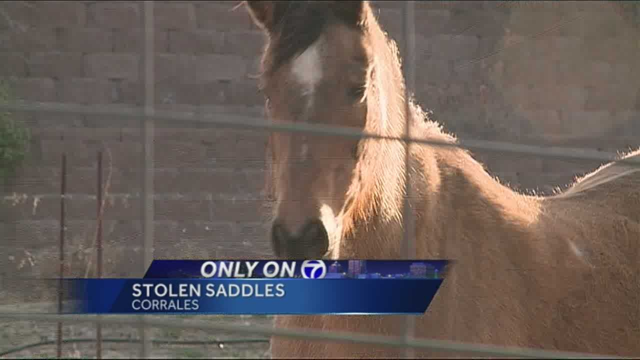 The horse capital of New Mexico is finding itself the victim of some unusual thefts.