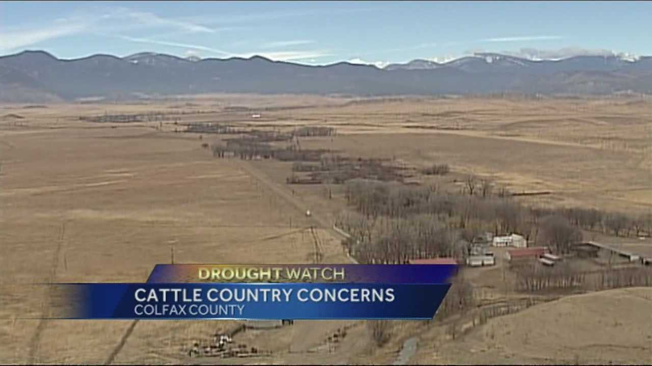 NM ranchers face dry season, breaking point