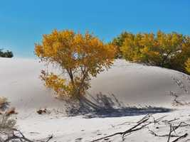 7. White Sands National MonumentWhite SandsDunes Drive