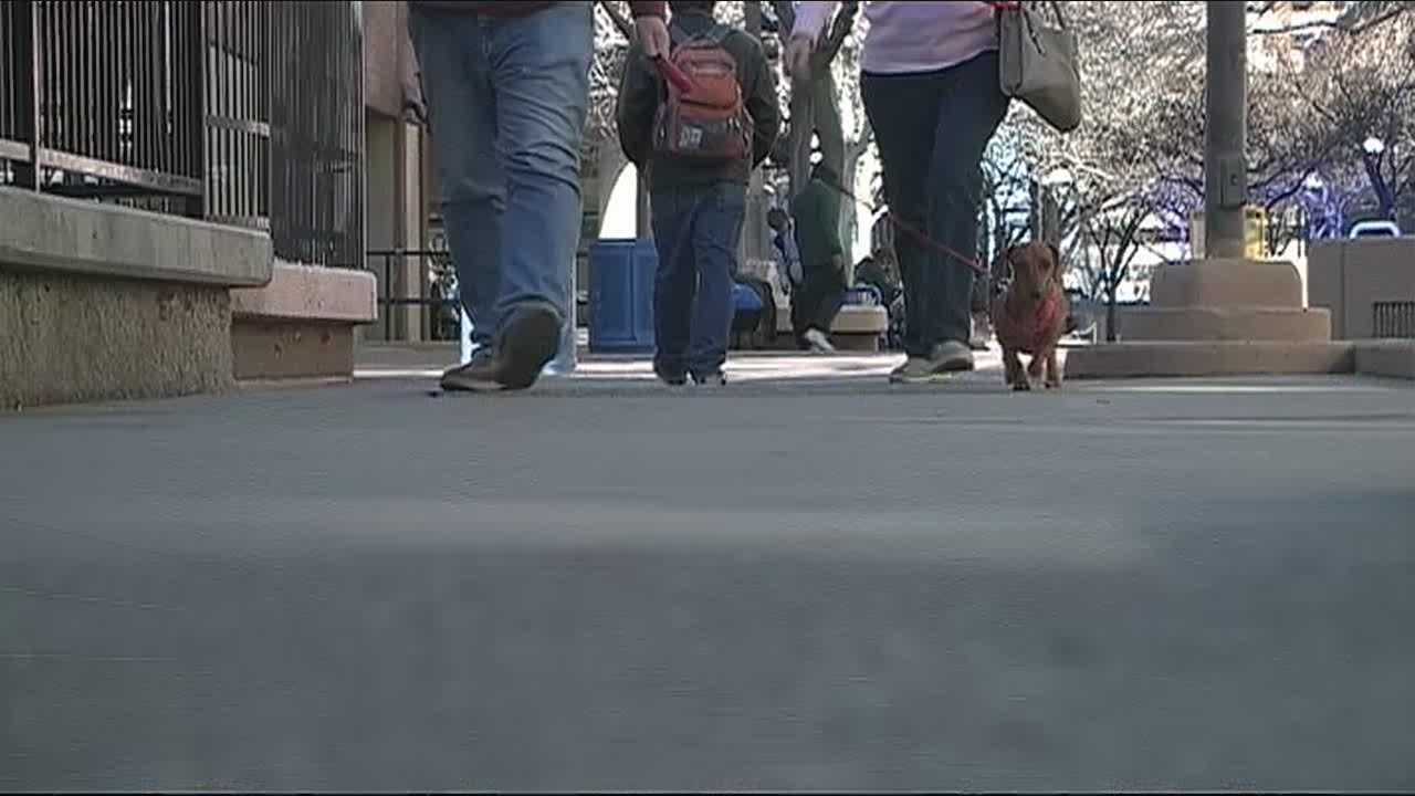Many say crime, drugs and homelessness are a constant problem at Albuquerque's 4th street mall, we've shown you the problem, now we tell you what the city is planning to do.