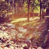 The Hidden StreamA hidden stream tucked away in Ruidoso, New Mexico- near Bonito Lake.