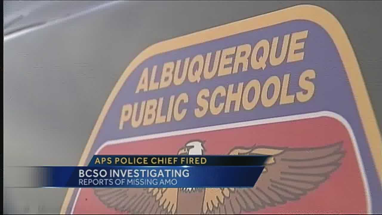Interim APS police chief named