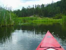 Fenton Lake, northwest of Bernalillo, Rainbow Trout (Northern NM)