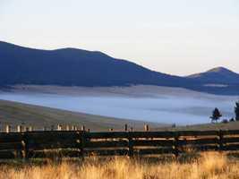 Valle Vidal, Sangre de cristo Mountains, Rainbow Trout (NE NM)