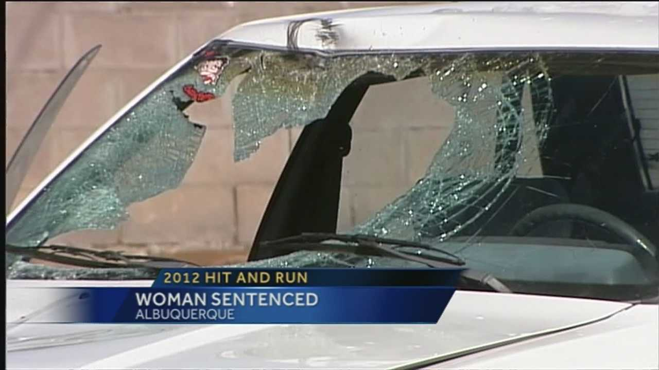 Woman pleads guilty in 2012 hit-and-run