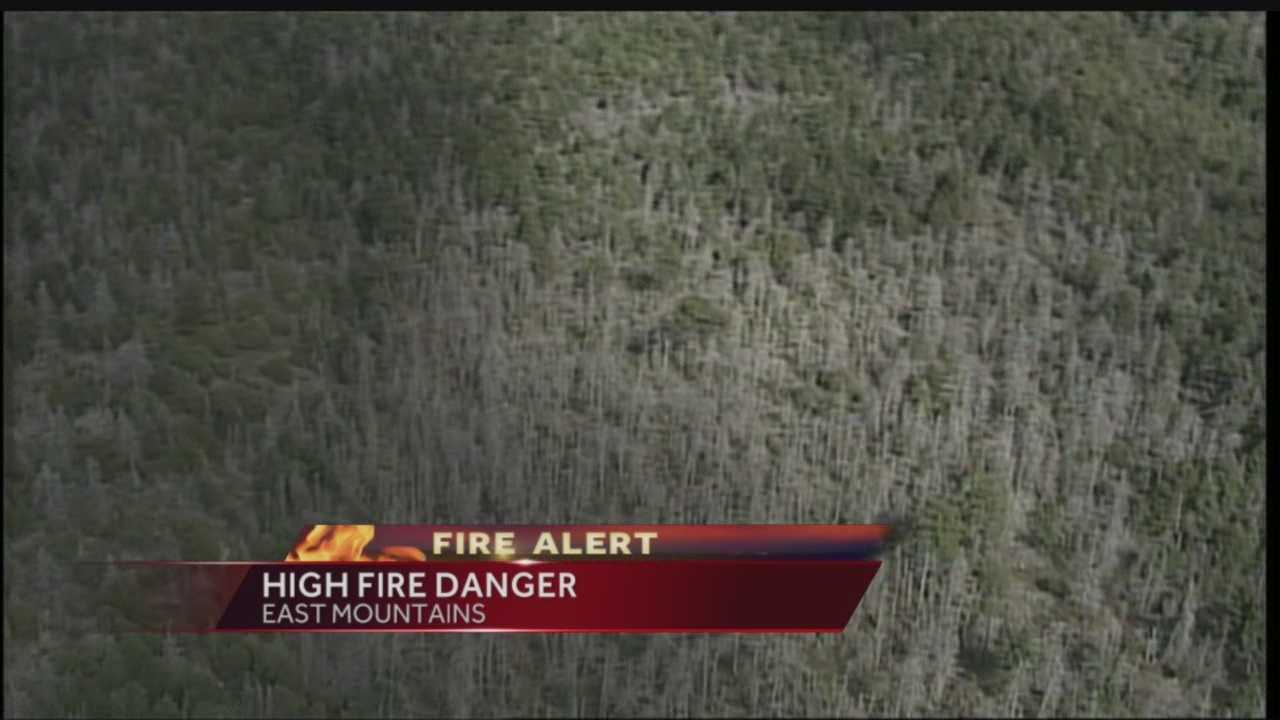 Wildfire danger looms in dense East Mountain forests