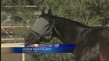Jan. 7, 2014: NM environment department recommends denying permit to horse plant