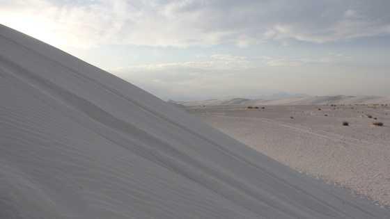 white sands generic.jpg