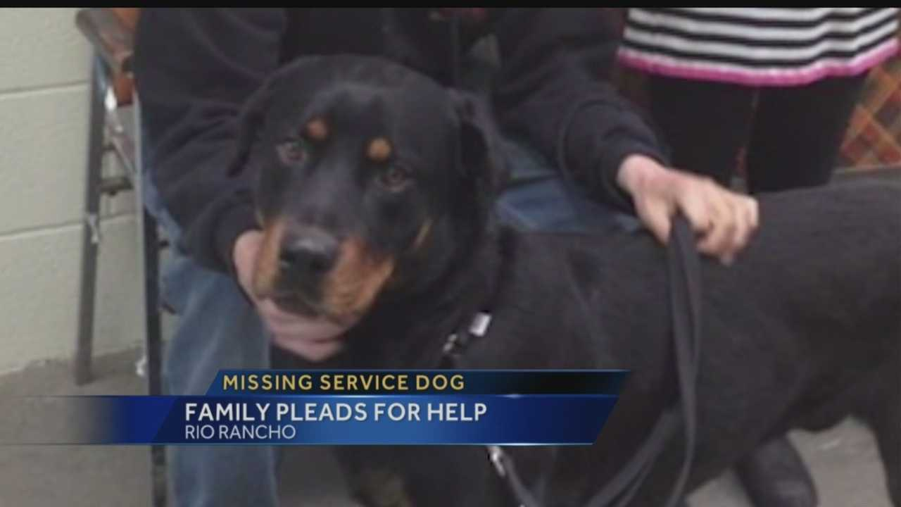 An Iraq War veteran said his dog got loose this past weekend, and is likely running around in the Rio Rancho area, unless it was stolen.