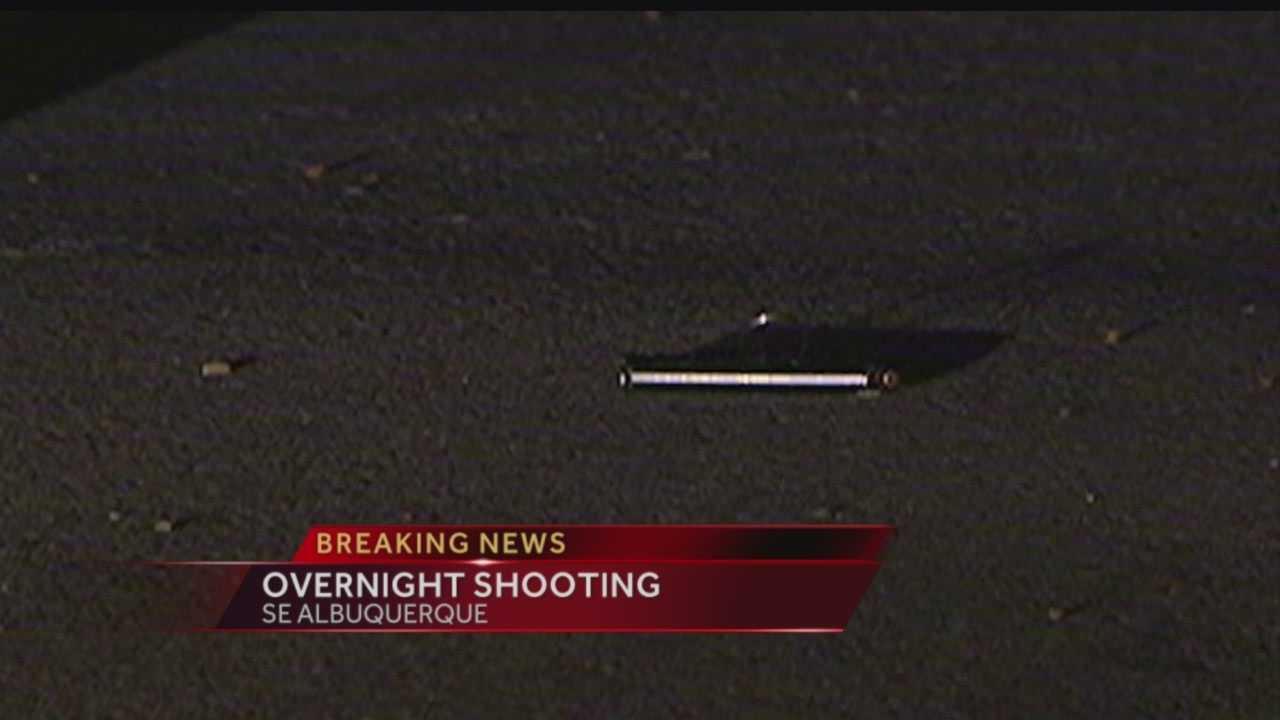 Overnight Shooting on Vassar Drive