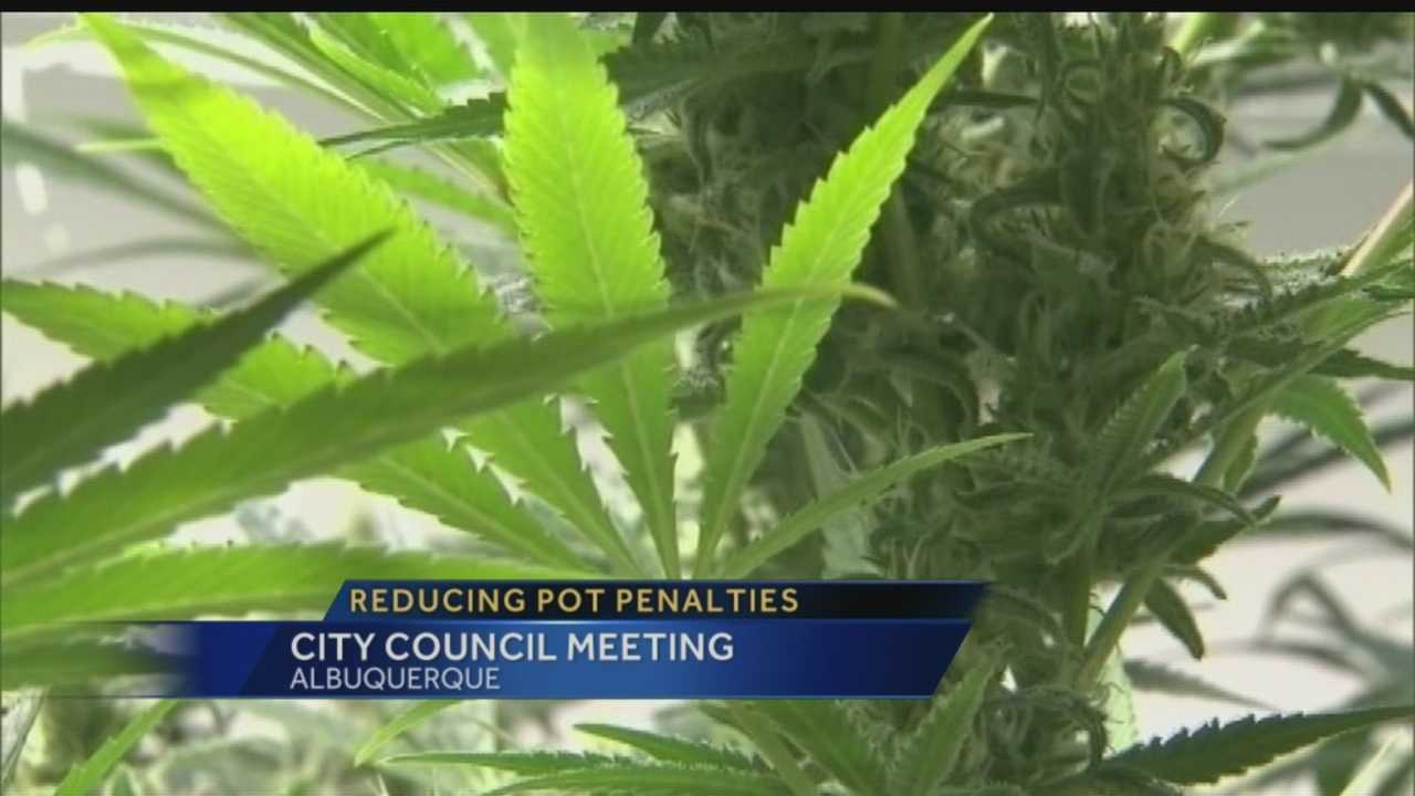 Laura reports from an Albuquerque City Council meeting