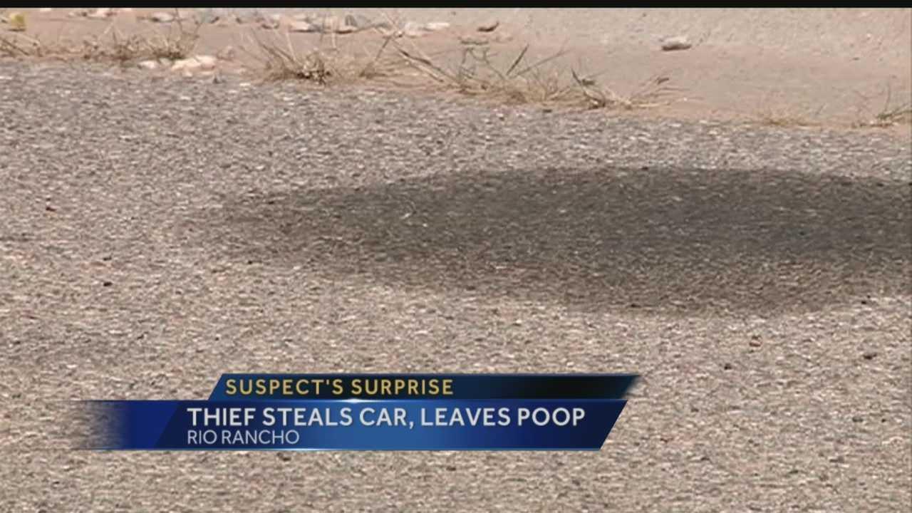 Report: Thief steals car, leaves bag of poop behind