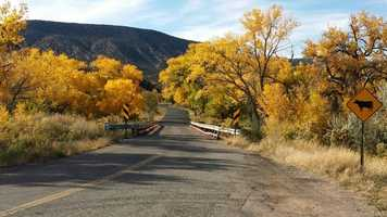The Jemez Mountain Trail (begins at the junction of U.S. 550 and State Road 4).