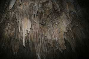 33. National Park annual pass (start with Carlsbad Caverns)