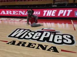 WisePies Pizza buys naming rights to the arena that is also known as The Pit.