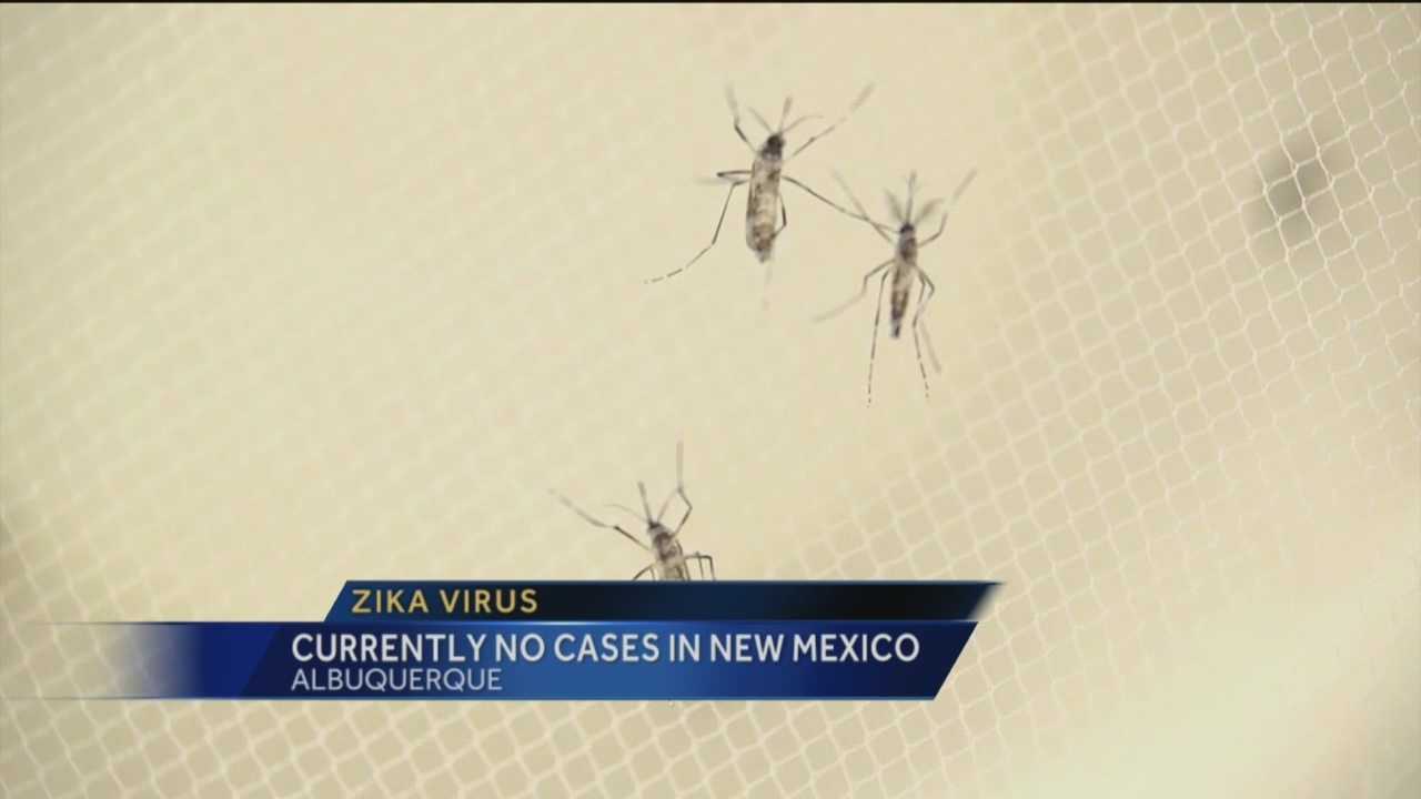 Currently no cases of Zika virus in NM