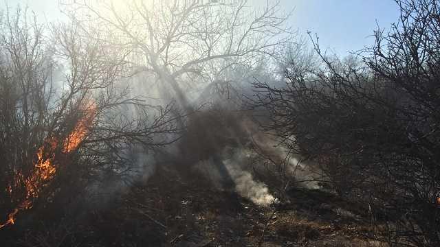 Firefighters battle Bosque blaze on Santo Domingo Pueblo